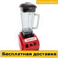 Промышленный блендер GoodFood PROFI BL2000